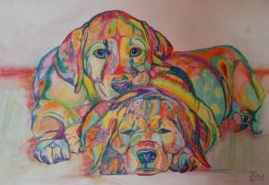 Pups, Elizabeth Willmott-Harrop