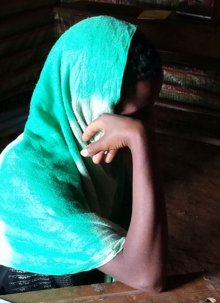 HIS 5 Azeng Ethiopia EWH 19 Nov 15 - cropped