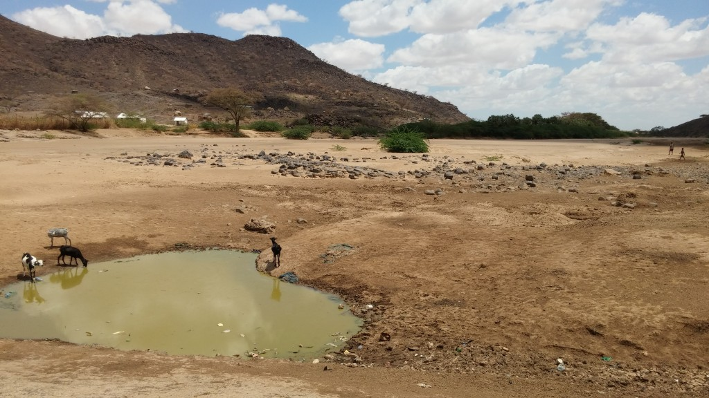 Turkana river